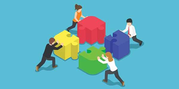 Cooperating Agencies