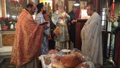 Photo of Lady Theotokos invites us to live God